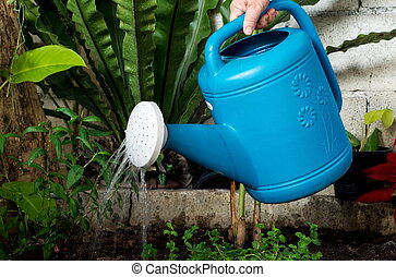 Watering pot - Some were seen hand-held watering can Blue...
