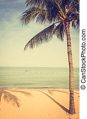 Beautiful beach and sea with palm tree - Beautiful beach and...