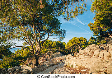 Path hiking trails among Calanques on the French Riviera...