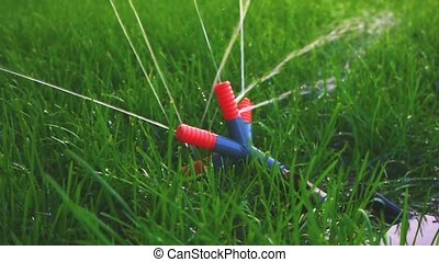 Plastic garden sprinkler working in fresh spring grass Slow...