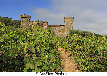Napa Valley vineyard and castle, California