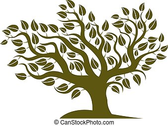 Vector illustration of stylized branchy tree isolated on...