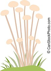 Toadstool illustration Mushrooms toadstool on a white...