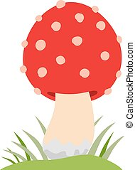 Amanita poisonous mushroom, isolated on white background -...