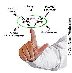 Determinants, de, população, saúde,