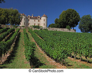 Lagrezette Castle, vigne, vineyard - Valley of River Lot ;...