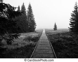 Wooden path in peat bog near Bozi Dar in misty morning, Ore...