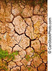dirt soil  background