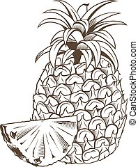 Pineapple in vintage style. Line art vector illustration