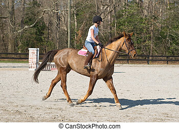 Young Woman Equestrian Training on Brown Horse