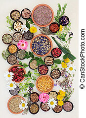 Healing Herbs and Flowers - Healing herb and flower...