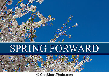 Spring Time Change, A tree in full bloom with blue sky and...