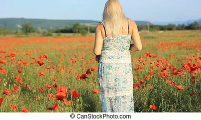 girl on the poppy field - girl on the summer red poppy field...
