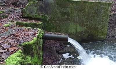 Sewer Canal in the Forest - Sewer canal in the forest during...