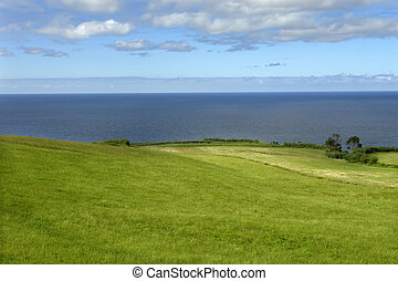 azores coastal fields at sao miguel island...
