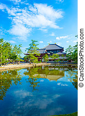 Daibutsuden Ro-Mon Entry Gate Lake Reflection V - Pedestrian...