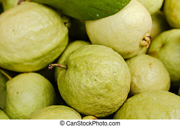 Guava - Guava for sale in thailand local market