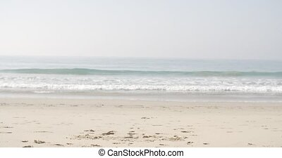 Woman Running On The Beach - Slender fit young woman...