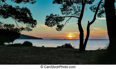 Mediterranean sunset through the pine trees 4k - Beautiful...