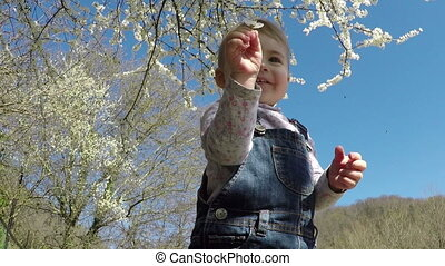 small child playing in the park Spring Flowering tree Blue...