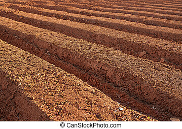 ploughed farmland - ploughed brown fertile farmland in a...