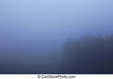 Cloudy Treeline - A foggy, hazy treeline on the edge of a...