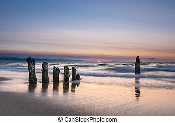 Groynes on shore of the Baltic Sea in the evening