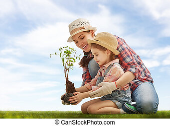 girl plant sapling tree - Mom and her child girl plant...
