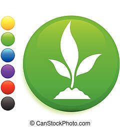 plant icon on round internet button