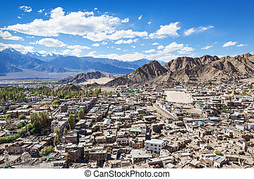 Leh town - A lot of local houses in the himalayan desert,...