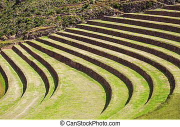 Inca Pisac, Peru - Inca terraces in Pisac. It is a Peruvian...