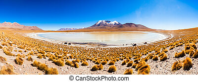 Lake, Bolivia Altiplano - Panoramic view of Laguna Canapa,...