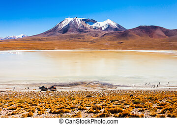 Lake, Bolivia Altiplano - Laguna Canapa is a salt lake in...
