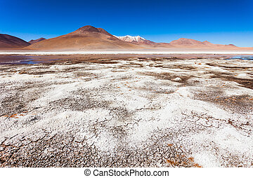 Lake, Bolivia Altiplano - Laguna Honda is a salt lake in the...