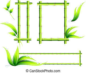 Bamboo Frames Original Vector Illustration Green Nature...