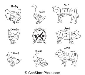 Set Schematic Vew of Animals for Butcher Shop - Set a...