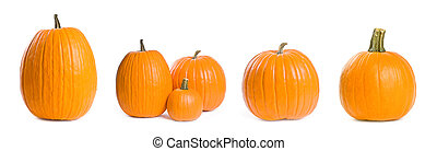 Various Pumpkins Isolated on White