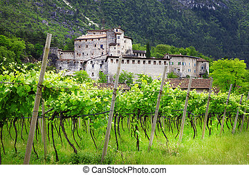 vineyards and castles of Italy Trentino Alto adidge region -...