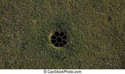 Golf ball falls into the hole close up