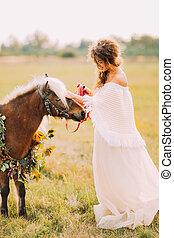 hermoso, poco, novia, soleado, campo,  poni, paseos