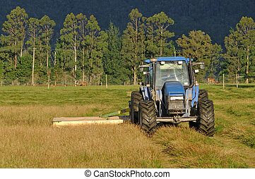 mowing pasture