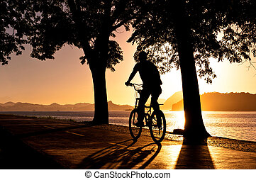 Early Morning Cycling - Silhouette of a Man Cycling during...