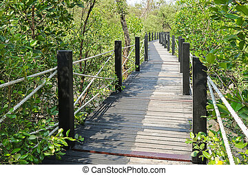 Simple walkway made of wooden path and rope surrounded by...