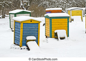 Colorful beehives in the apple tree garden in winter