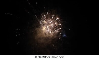 Fireworks In Night Sky -  Fireworks in night sky wedding day