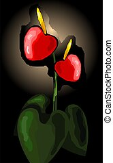 flor,  Anthurium
