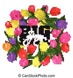 Vector colorful tulips frame. Isolated