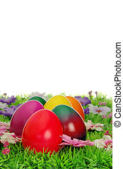 Ostereier auf Blumenwiese - easter eggs on flower meadow 23