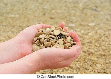 Hand mit Steinen - hand with stones 13