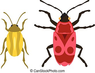 Beetle flat insect bug in cartoon style vector - Beetles...
